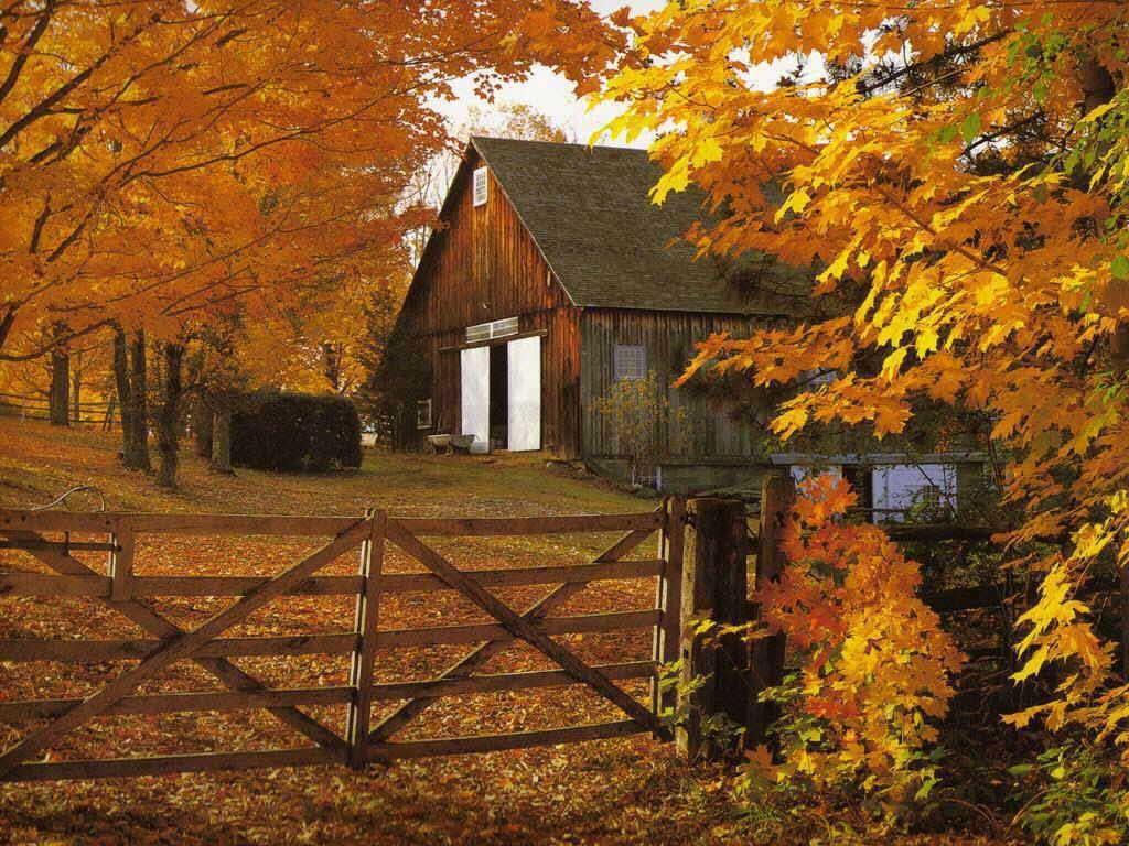 http://arcus.a.r.pic.centerblog.net/o/750a9c1f.jpg