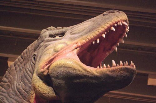Dinosaur adjusted with Retinex