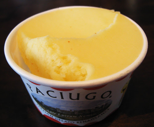 Gelato and Sorbet Tasting at Paciugo Gelato