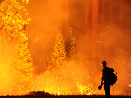 9 Scary Facts About the Yosemite Fire