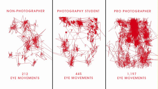 Canon's 'Obsession Experiment' | See How The Average Person vs Pro Views Image Details