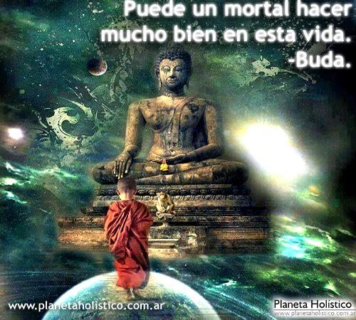 Buda Frases De Buda Y Ensenanzas Budistas La Historia De Siddharta