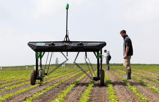 Robots fight weeds in challenge to agrochemical giants | Reuters