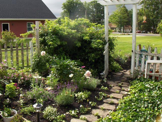 ARBOR HOUSE LANE: My Gardens