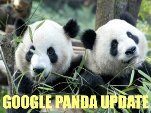 Learn About The Latest Google Panda 4.0 Update -