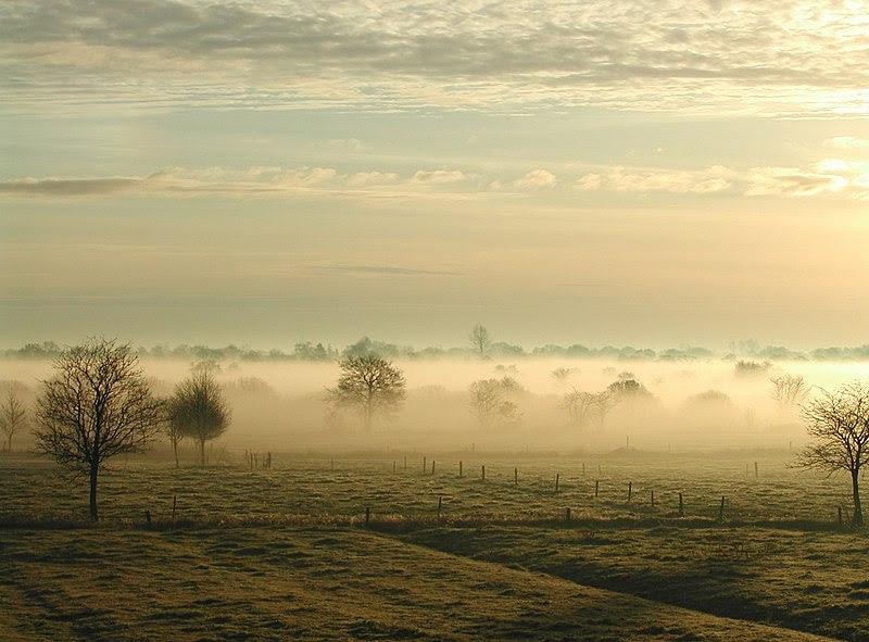 Archivo:Nebelostfriesland.jpg