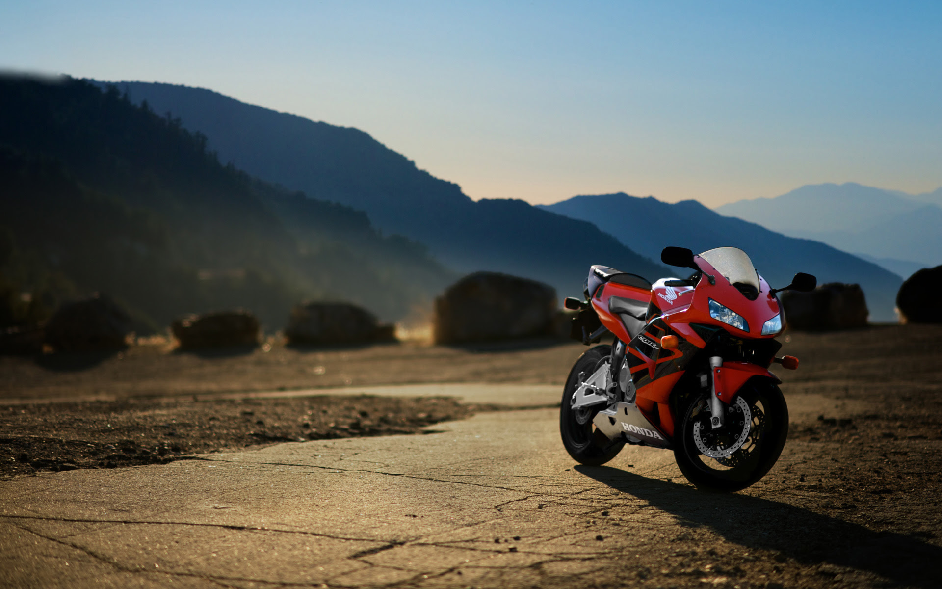 Honda CBR 600RR, HD Birds, 4k Wallpapers, Images, Backgrounds, Photos and Pictures