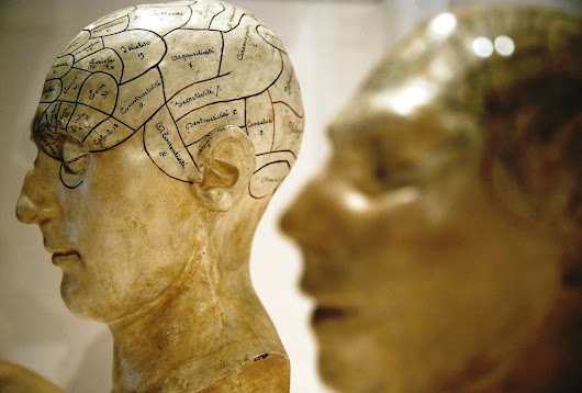 How Does The Human Brain Evolve? Judging Other People Helps, Research Suggests