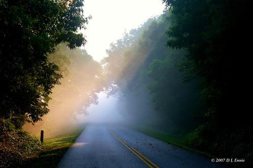 Misty Sunshine