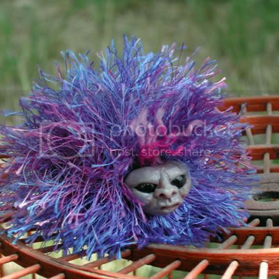 arnold the pygmy puff
