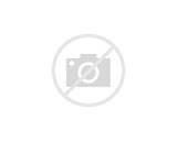Washer Parts: Troy Bilt Parts Pressure Washer