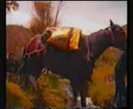 Friskies Tux ad (1996)