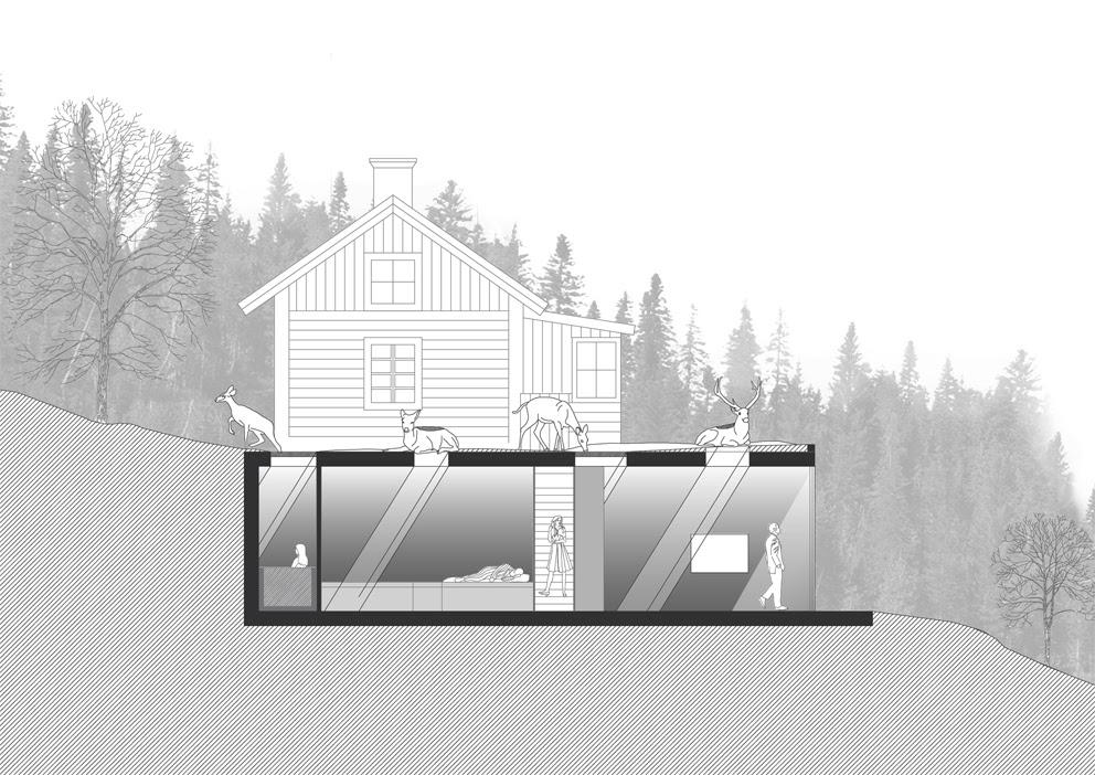 Ampliacion Casa Deer Grotto, Visiondivision, Arquitectura, casas, diseño