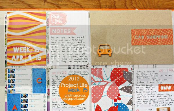 Project Life - Week 15