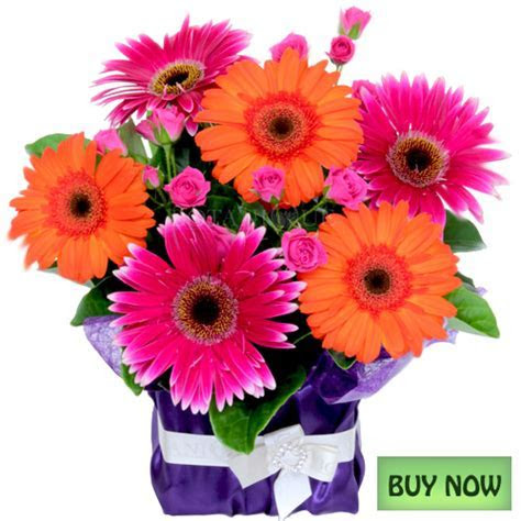 Flowers Online Gold Coast   Flower delivery Botanique