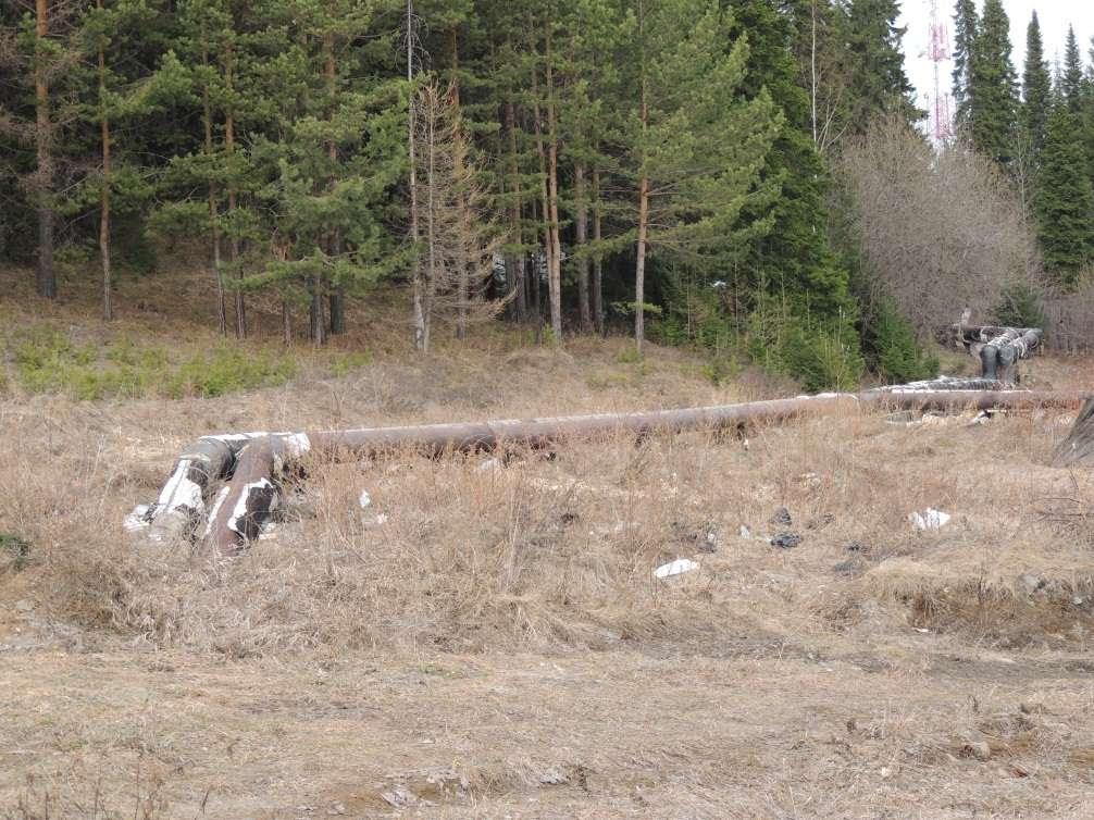 Вексельберг – настоящий паразит, разоряющий Урал