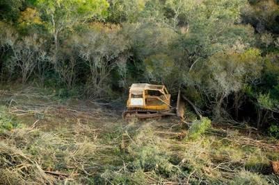 ACOMPAÑA CRÓNICA: ARGENTINA BOSQUES BAS101. SALTA (ARGENTINA), 22/07/2014.- Fotografía sin fecha cedida por Greenpeace Argentina hoy, martes 22 de julio de 2014, donde se ve un vehículo trabajando en un bosque en la norteña provincia de Salta (Argentina). Ambientalistas de Argentina han lanzado un alerta sobre el avance de la desforestación, en particular en la norteña provincia de Salta, cuyas autoridades, sin embargo, aseguran que castigan la tala ilegal y que los desmontes que autorizan se ajustan a las normas. El país suramericano aprobó a finales de 2007 una ley nacional para proteger los bosques nativos frente al avance de la frontera agropecuaria, pero la norma no ha impedido que, según datos de Greenpeace, cada año se desforesten unas 250.000 hectáreas, apenas un 20 % menos que antes de la ley. EFE/Martín Katz/Greenpeace Argentina/SOLO USO EDITORIAL/NO VENTAS salta  salta deforestacion desmonte en la selva denuncia de greenpeace contra los desmontes en salta vistas aereas