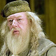 Seven clues that 'Potter's' Dumbledore was gay