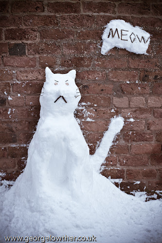 My attempt at making a snow cat!