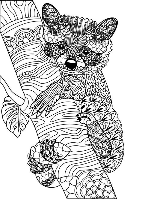 animal coloring pages  adults images