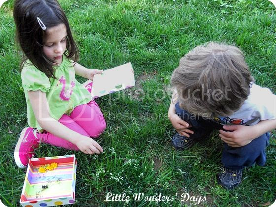 nature treasure box for kids