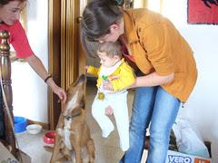 Lorenzo e Bea, il cane