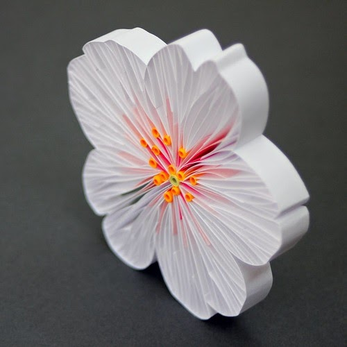 Contemporary Quilling By JUDiTHROLFE