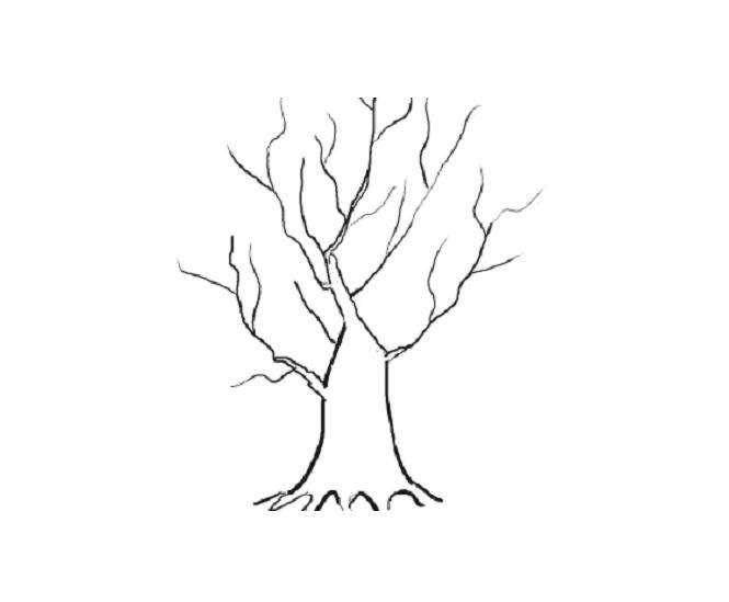 Sonbahar Ağaç Gövdesi Boyama Sayfası Gauranialmightywindinfo