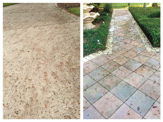 How To Remove Acorn Stains - Orlando - Central Florida