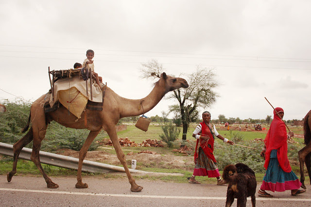 driving from agra to jaipur