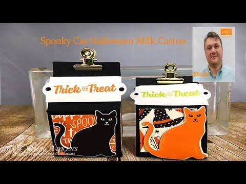 Spooky Cat Halloween Milk Carton