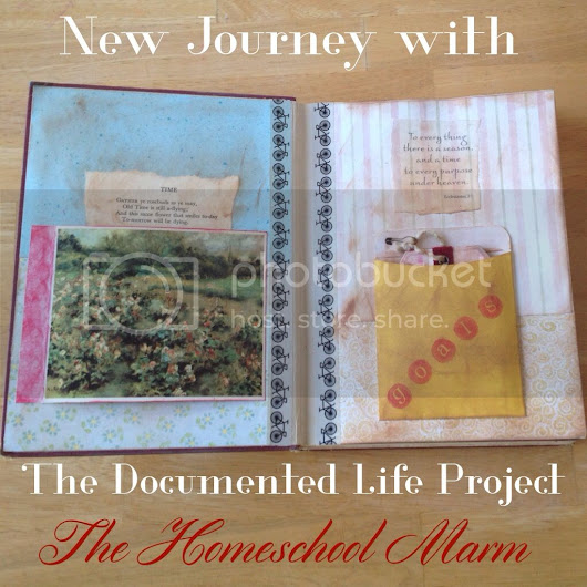 New Journey with The Documented Life Project 2015