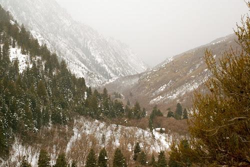 Mill Creek Canyon