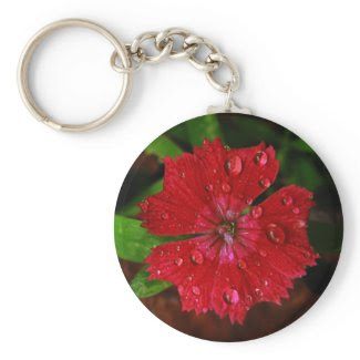 Red Dianthus With Raindrops keychain