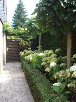 Tuinieren - Je voortuin als visitekaartje