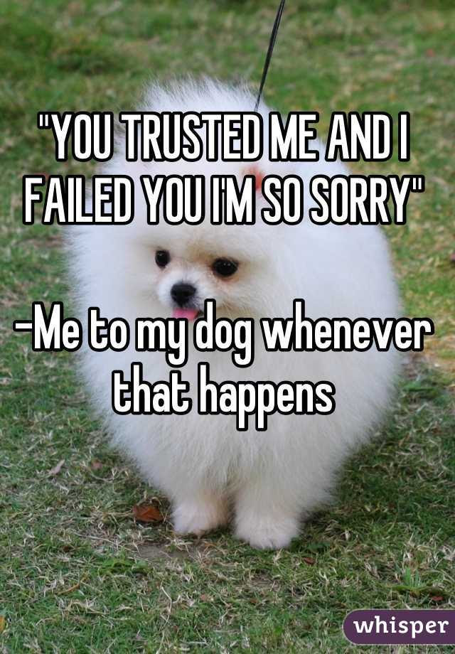 You Trusted Me And I Failed You Im So Sorry Me To My Dog Whenever
