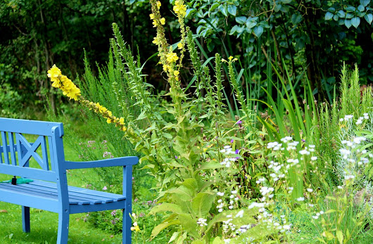 Relaxation Station: How To Make Your Garden More Chilled Out