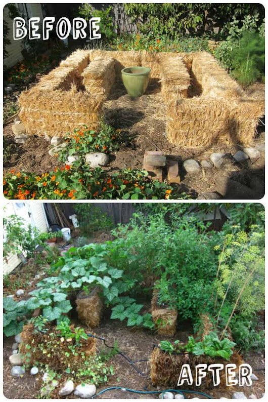 Introduction to Straw Bale Gardening • Gardens & Landscapes • 1001 Gardens