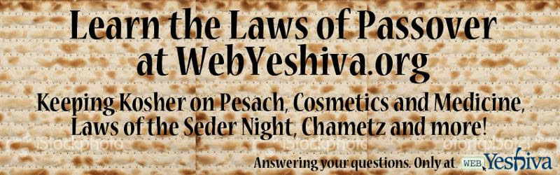Laws of Passover 2012