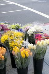 Flowers, San Francisco