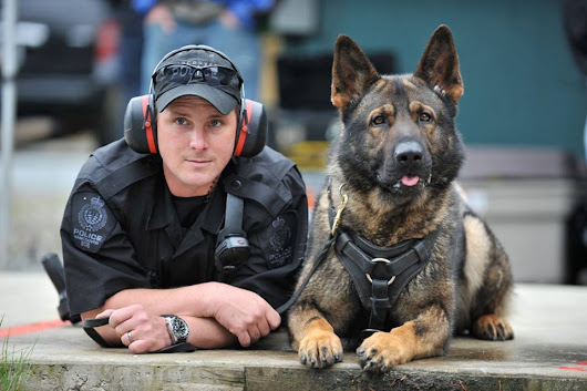 Police dog Training | Bluegrass from Schenectady, NY
