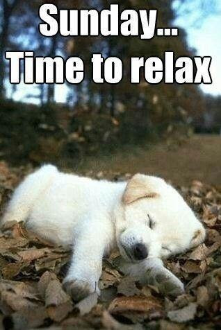 Sunday Time To Relax Picture Quotes
