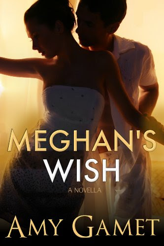 Meghan's Wish: A Novella (Love and Danger) by Amy Gamet