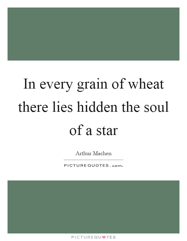 In Every Grain Of Wheat There Lies Hidden The Soul Of A Star