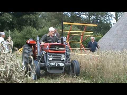 Harvesting With The Reaper Binder At Ryedale Folk Museum