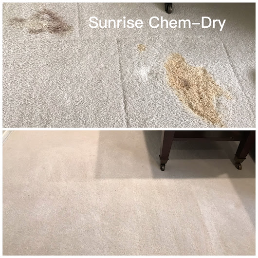 How To Remove Blood From Your Carpet | Sunrise Chem-Dry Rated #1 In Arizona Carpet Cleaning, Stain Removal, and Carpet Re-Patching