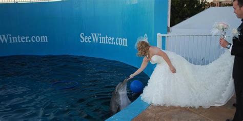 Clearwater Marine Aquarium Weddings   Get Prices for