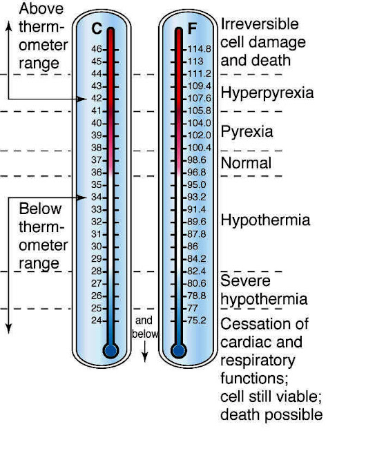 Taber's Medical Dictionary:Temperature