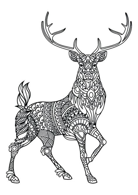 animal mandala coloring pages  coloring pages  kids