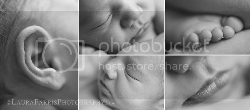 photo newborn-baby-photographers-boise-idaho_zps8a202062.jpg